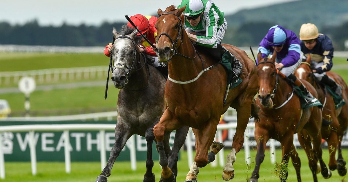 Irish racing to boost crypto bookies